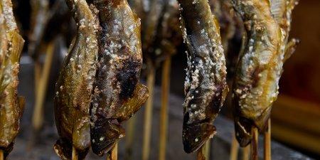 面河furusato市場的鹽烤香魚